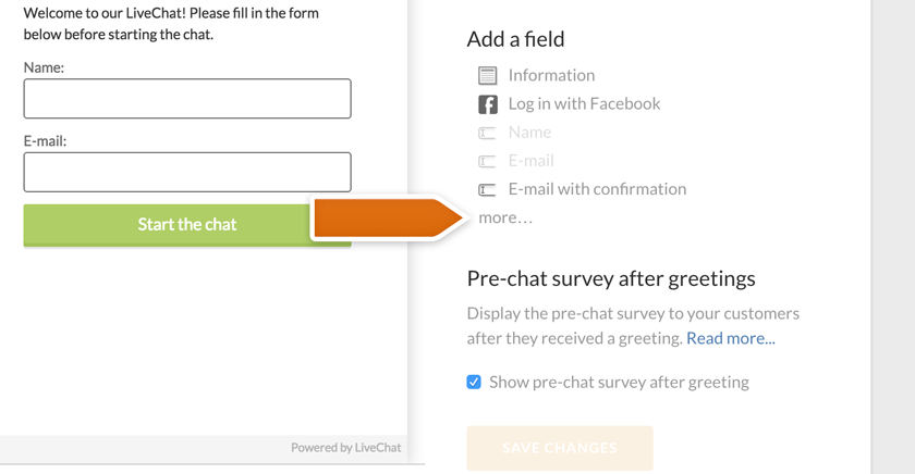 More button in pre-chat survey section