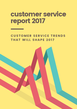Customer Service Report 2017