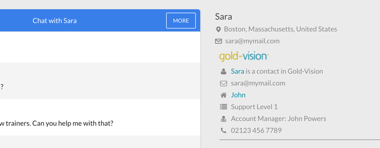 Gold-Vision: create new CRM records from LiveChat